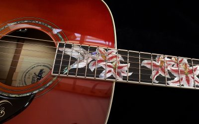 Custom Hummingbird Guitar